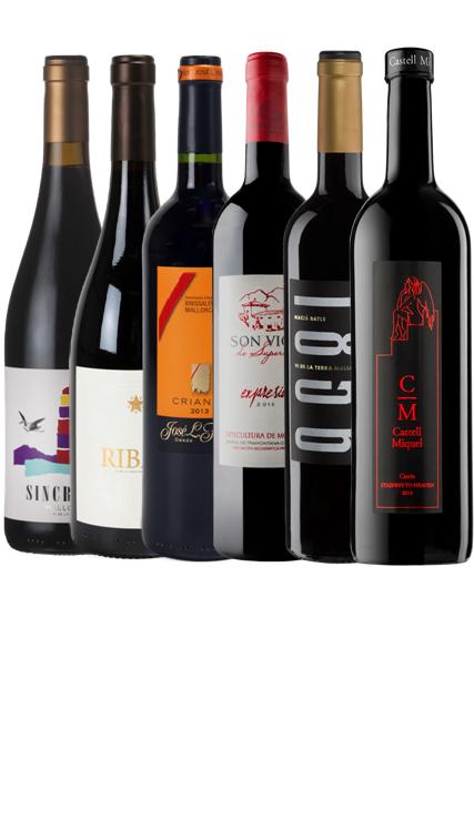 Vino de Mallorca Negre smagekasse